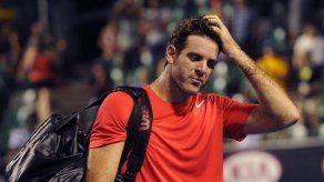 Tenista argentino Del Potro regresa a las canchas en el 2015