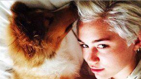 Miley Cyrus rinde homenaje a su malograda mascota