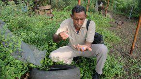 Los equipos de vectores están buscando criaderos de mosquitos, eliminándolos y fumigando.
