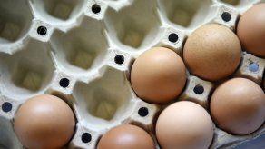 EEUU: Demandan a California por ley sobre huevo