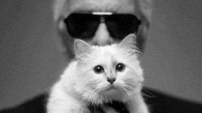 La gata de Karl Lagerfeld no ha sido finalmente su principal heredera
