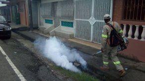 Minsa visitó 5 mil viviendas durante fumigación en Colón donde se registran 390 casos de dengue