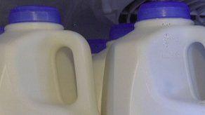 Empresa panameña comprará 240.000 litros de leche para apoyar sector ganadero