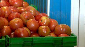 Los puestos de productos agrícolas son los primeros en incorporarse en la plataforma de Vale Digital.