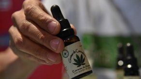 Iniciativa que regula el cannabis medicinal permanece estancada en la Asamblea Nacional