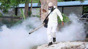 Contabilizan 226 casos de dengue