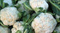 5 maravillas de la coliflor