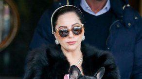 Lady Gaga diseñará una línea de ropa para perros