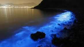 Aguas de Hong Kong refulgen con peligroso brillo