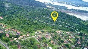 MiAmbiente a UABR: Es inviable la venta de áreas boscosas propuestas en subasta