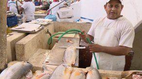 Realizan operativo de salud en el Mercado del Marisco