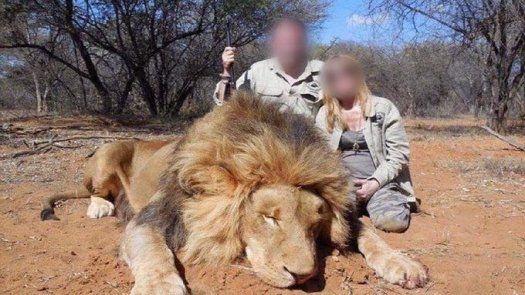 Pareja francesa pierde su empleo por escándalo de caza en África