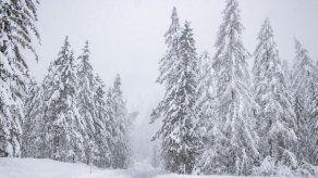Al menos 8 muertos y 7 desaparecidos en Teherán por avalanchas de nieve