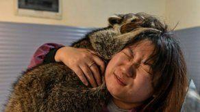 ¿Sabías que existen cafés con animales exóticos en China?