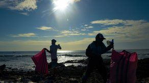 Cada año, se recogen más de ocho toneladas de residuos plásticos en las playas del archipiélago de Galápagos.