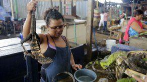 ¡A comer iguana!