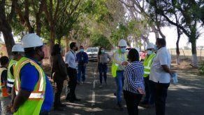 MiAmbiente investiga trabajos de tala y poda en este segmento del distrito de Guararé.