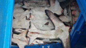 Prisión para peruanos por pesca ilegal en islas Galápagos