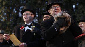 La marmota Phil predice que la primavera ya está en camino en Estados Unidos