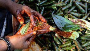 India apela a los Dioses para evitar los escupitajos de betel