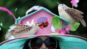 Sombreros extravagantes se hacen presente en el Royal Ascot 2013