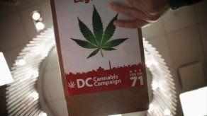 Suprema Corte mexicana concede amparo para importar semillas de marihuana