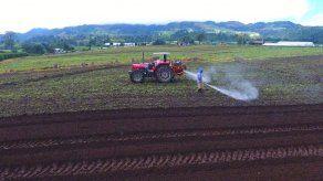 ISA desembolsará pago a productores por reclamos de última zafra del 2019 en los próximos días