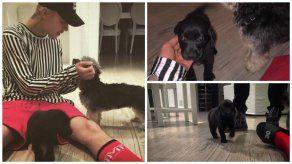 Justin Bieber tiene un nuevo cachorro llamado Phil