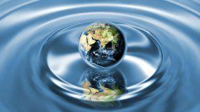 El Vaticano publica su manual del buen ecologista