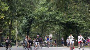 10 cosas que puedes hacer gratis en Nueva York