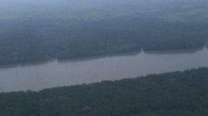 Impulsan plan de protección de bosques en zona indígena del Darién