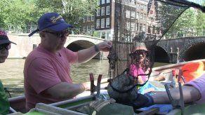 Los paseos por canales de Ámsterdam se reinventan con la pesca del plástico
