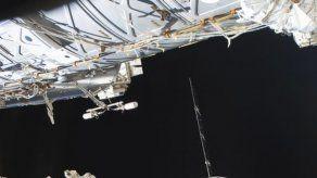 SpaceX entrega ratones y un robot a la estación espacial