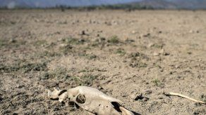 Chile anuncia inversiones por 5.000 millones de dólares para enfrentar aguda sequía