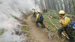 Incendios forestales arrasan costa central de California