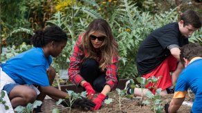 Melania Trump cultiva la huerta de la Casa Blanca
