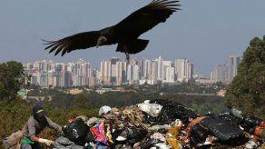 Recolectores de basura en Brasil