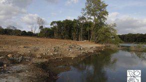 Penalizan a empresa por actividad ilícita en el área protegida de la Bahía de Panamá