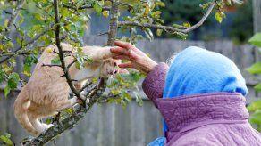 ¿Pueden las mascotas ayudar a las personas mayores a tener una mejor calidad de vida?